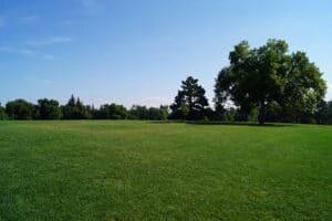City Park Fort Collins